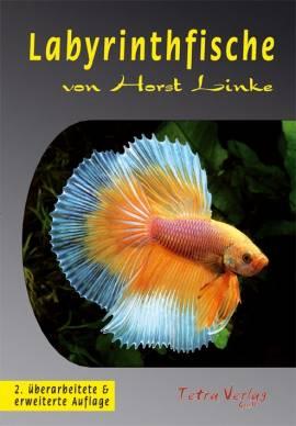 LABYRINTHFISCHE von Horst Linke - Bild vergrößern