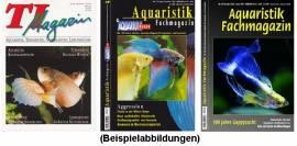TI-Magazin/Aquaristik-Fachmagazin (3 Ausgaben zum Sparpreis!) - Bild vergrößern