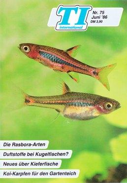 TI-Magazin/Aquaristik-Fachmagazin, Ausgabe 75