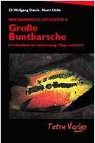 Große Buntbarsche (Amerikanische Cichliden II)