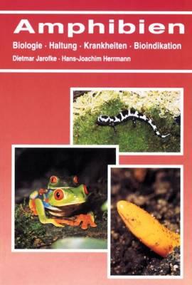 Amphibien - Bild vergrößern