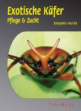 Exotische Käfer - Bild vergrößern