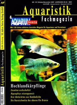 Aquaristik-Fachmagazin, Ausgabe 197 (Oktober/November 2007) - Bild vergrößern