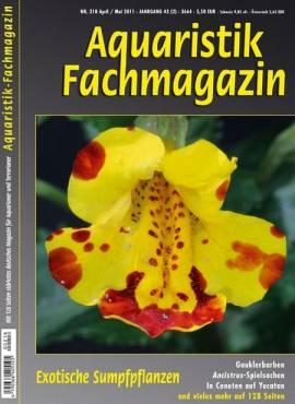 Aquaristik-Fachmagazin, Ausgabe 218 (April/Mai 2011) - Bild vergrößern