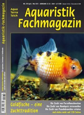 Aquaristik-Fachmagazin, Ausgabe 278 (April/Mai 2021) - Bild vergrößern