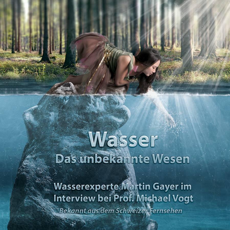 DVD Interview von Prof. Michael Vogt mit Martin Gayer