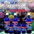 Reef Revolution®