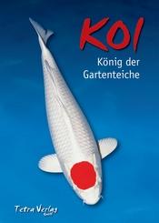 Koi - König der Gartenteiche