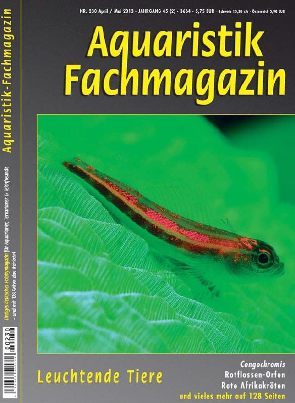 Aquaristik-Fachmagazin, Ausgabe 230 (April/Mai 2013)
