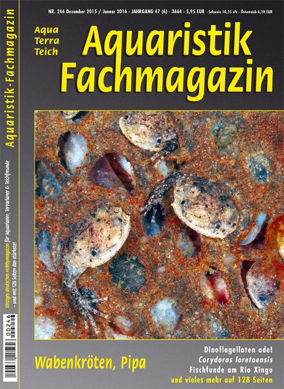 Aquaristik-Fachmagazin, Ausgabe 246 (Dez. 2015/Jan. 2016)