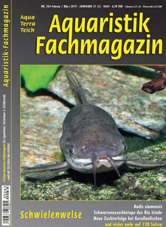 Aquaristik-Fachmagazin, Ausgabe 265 (Feb./März 2019)
