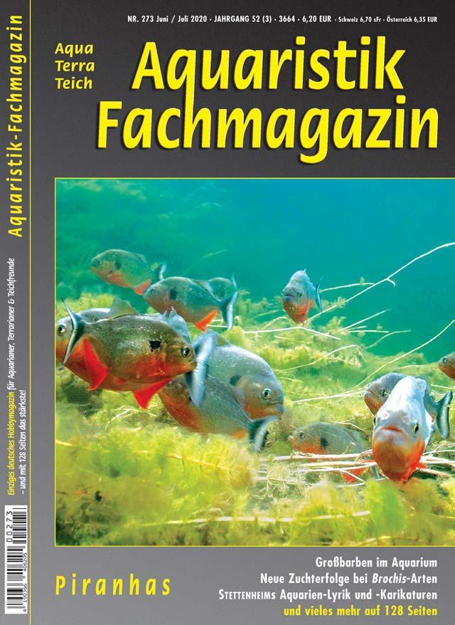 Aquaristik-Fachmagazin, Ausgabe 273 (Juni/Juli 2020)