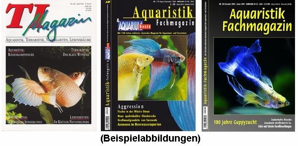 TI-Magazin/Aquaristik-Fachmagazin (3 Ausgaben zum Sparpreis!)