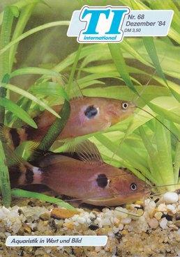 TI-Magazin/Aquaristik-Fachmagazin, Ausgabe 68